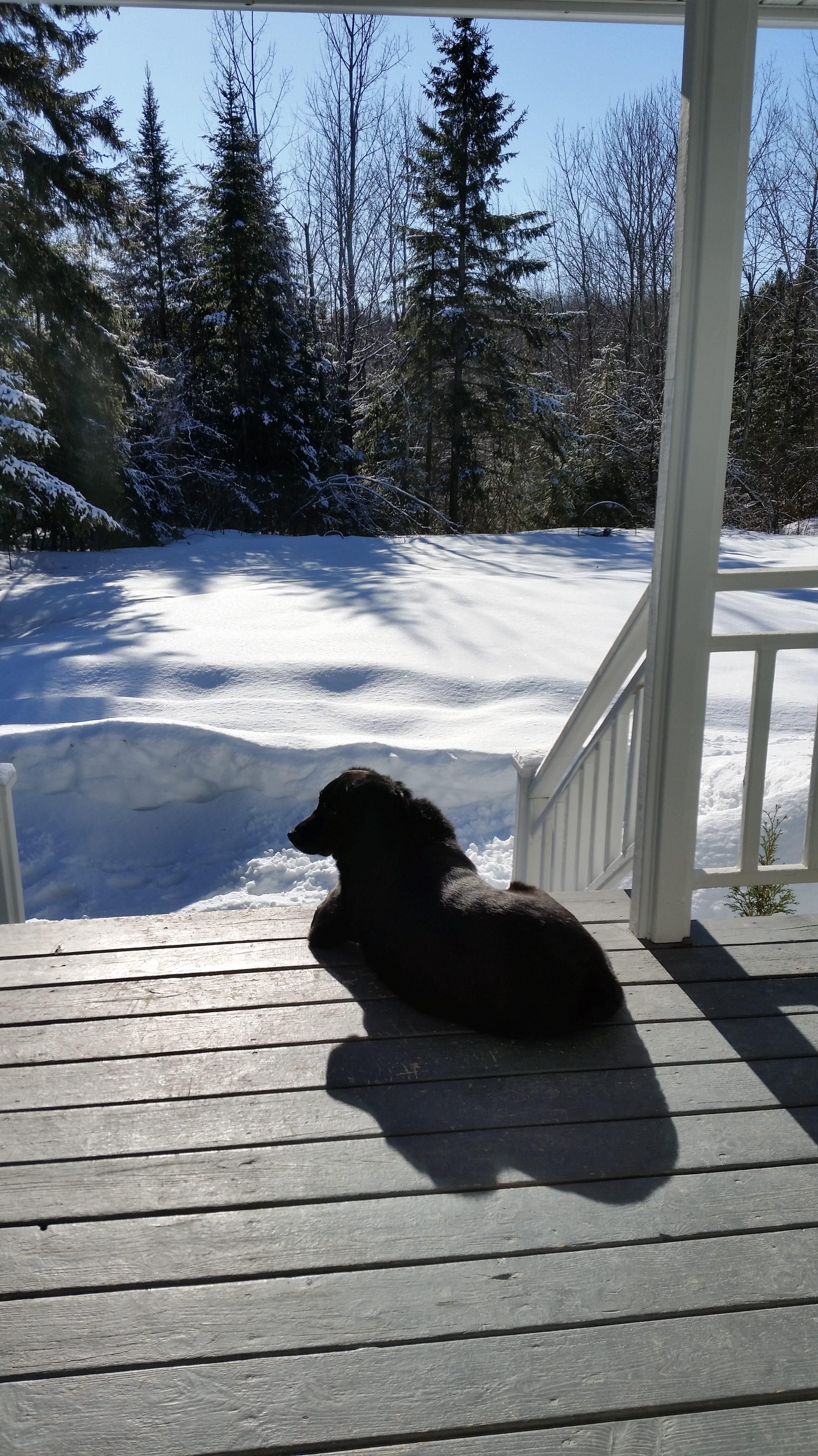 Sonne mit Schnee. Ein Traum